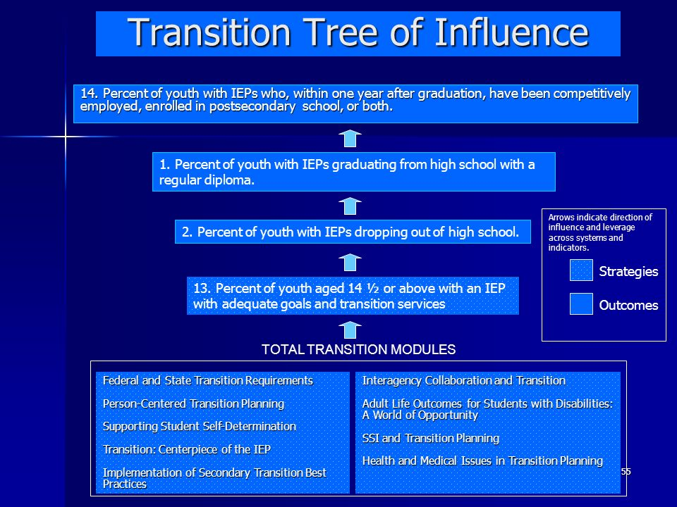 Transition Tree of Influence