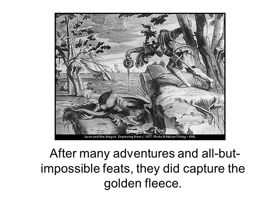 After many adventures and all-but-impossible feats, they did capture the golden fleece.