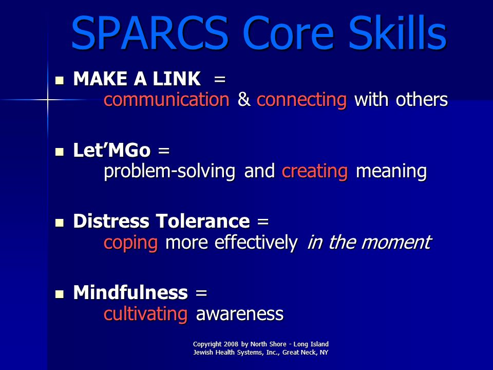SPARCS Core Skills MAKE A LINK = communication & connecting with others. Let'MGo = problem-solving and creating meaning.