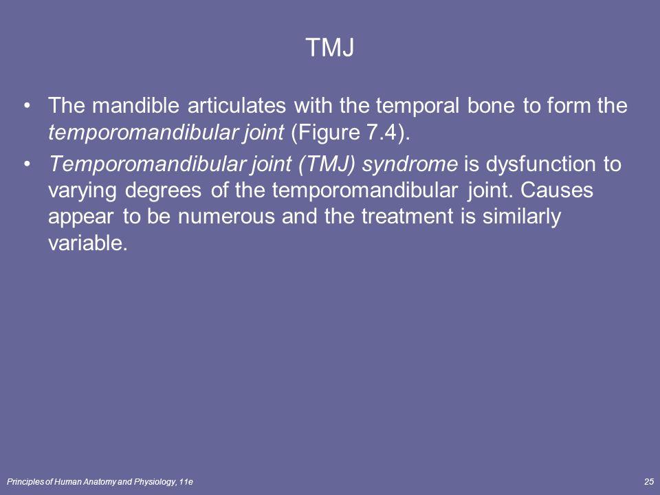 Articulates With The Temporal Bone To Form The Temporomandibular