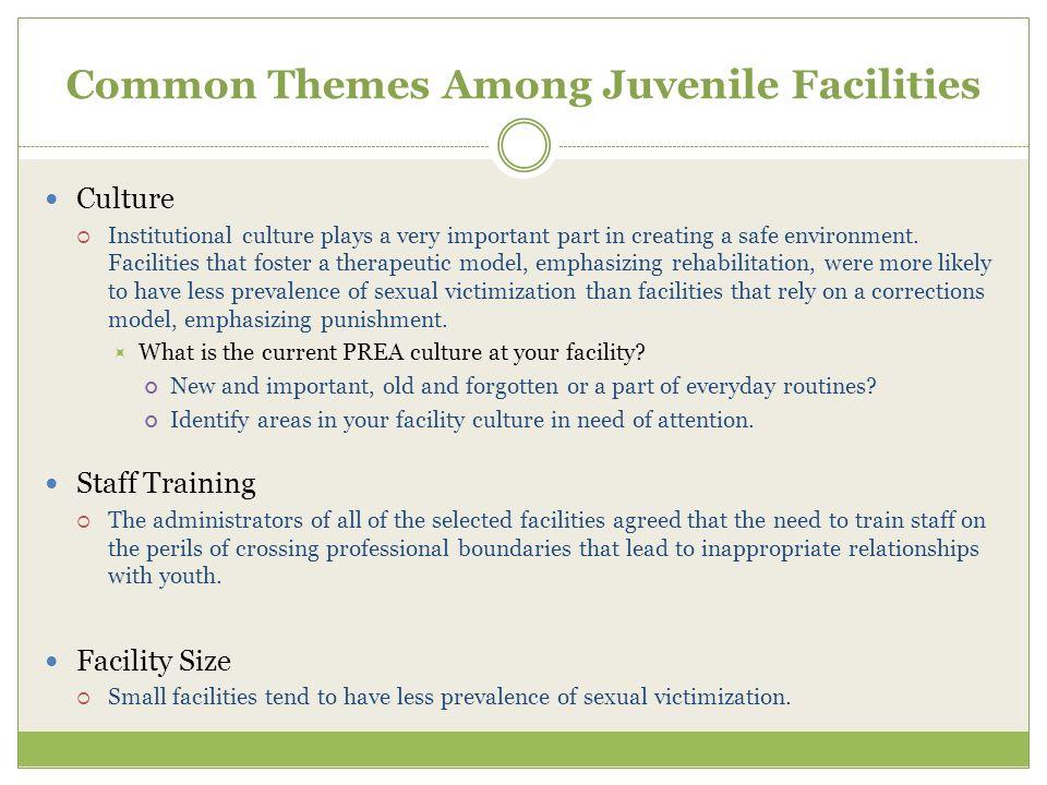 Common Themes Among Juvenile Facilities