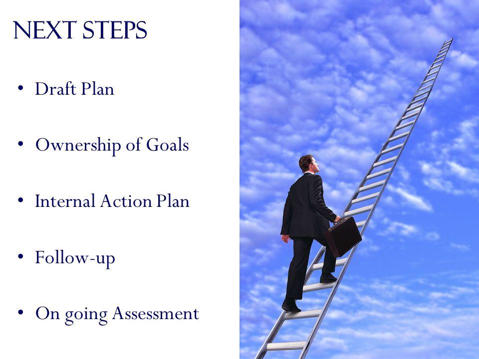 Next Steps Draft Plan Ownership of Goals Internal Action Plan