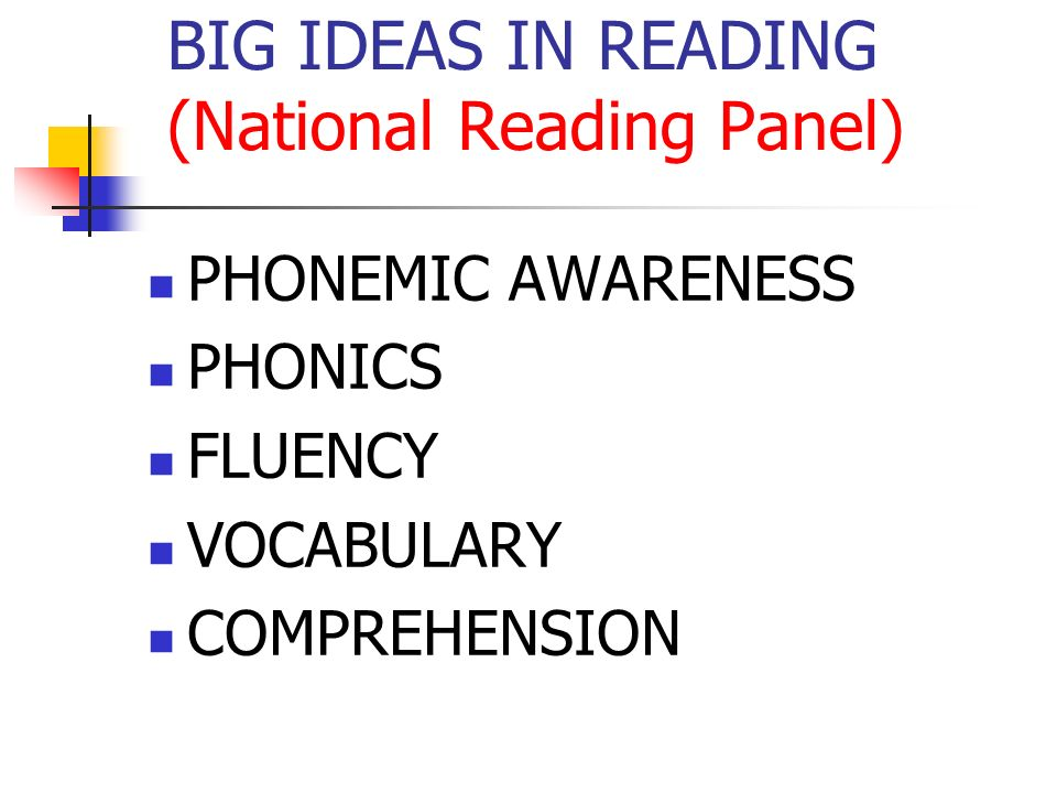 BIG IDEAS IN READING (National Reading Panel)