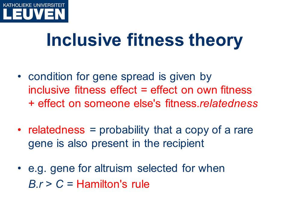 what is the relationship between altruism and inclusive fitness