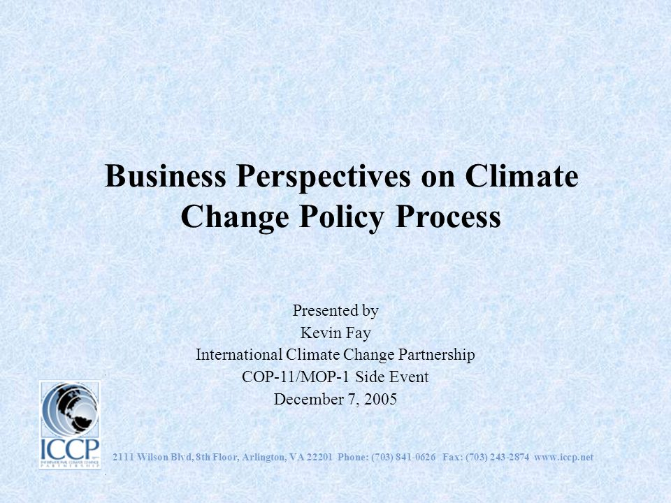 Business Perspectives on Climate Change Policy Process