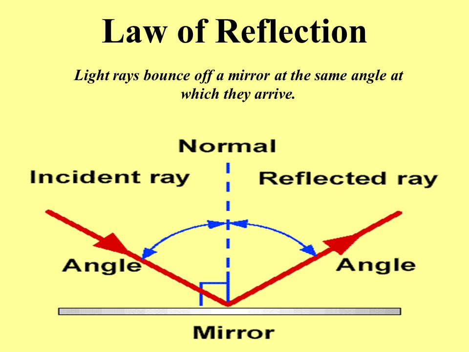 Light rays bounce off a mirror at the same angle at which they arrive.