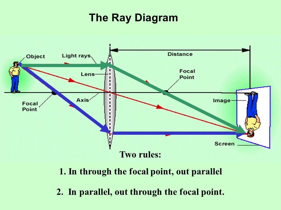 The Ray Diagram Two rules: 1. In through the focal point, out parallel