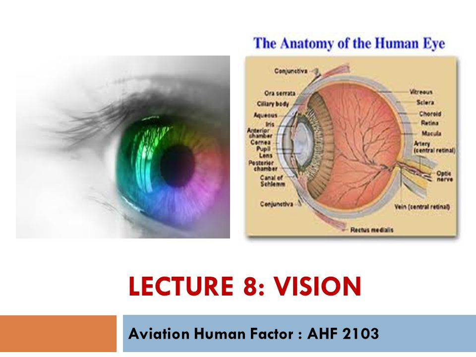 Aviation Human Factor Ahf Ppt Video Online Download