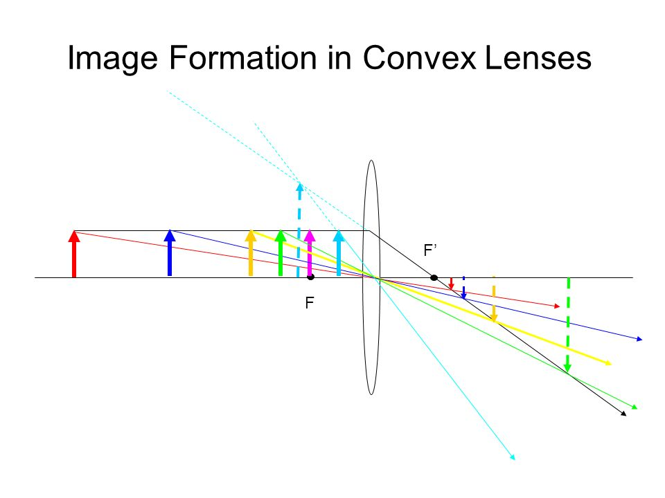 Image Formation in Convex Lenses