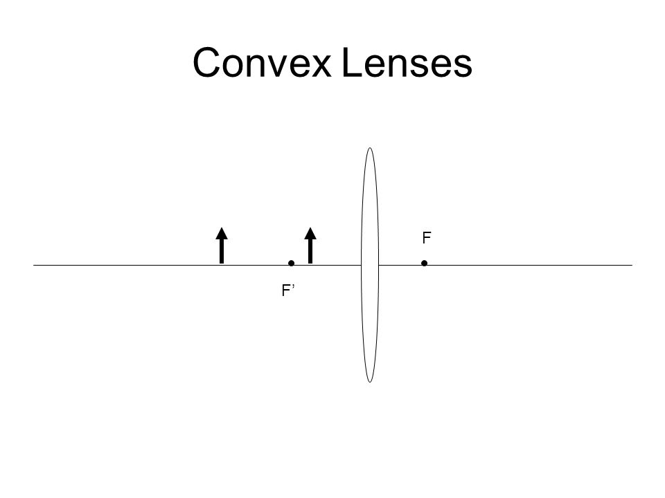 Convex Lenses F F'