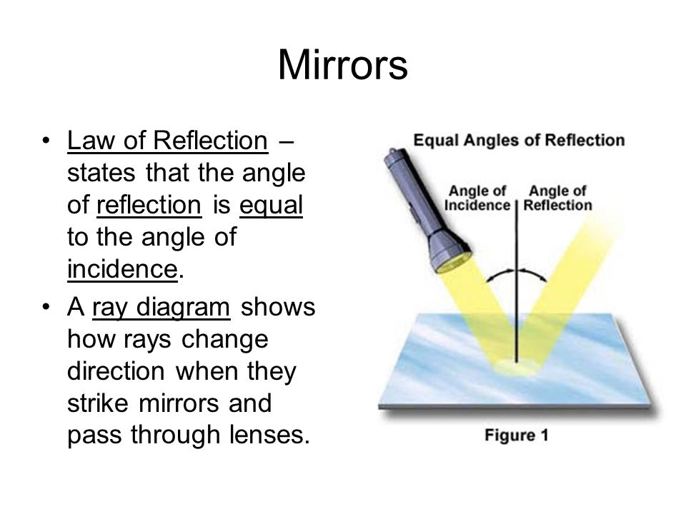 Mirrors Law of Reflection – states that the angle of reflection is equal to the angle of incidence.