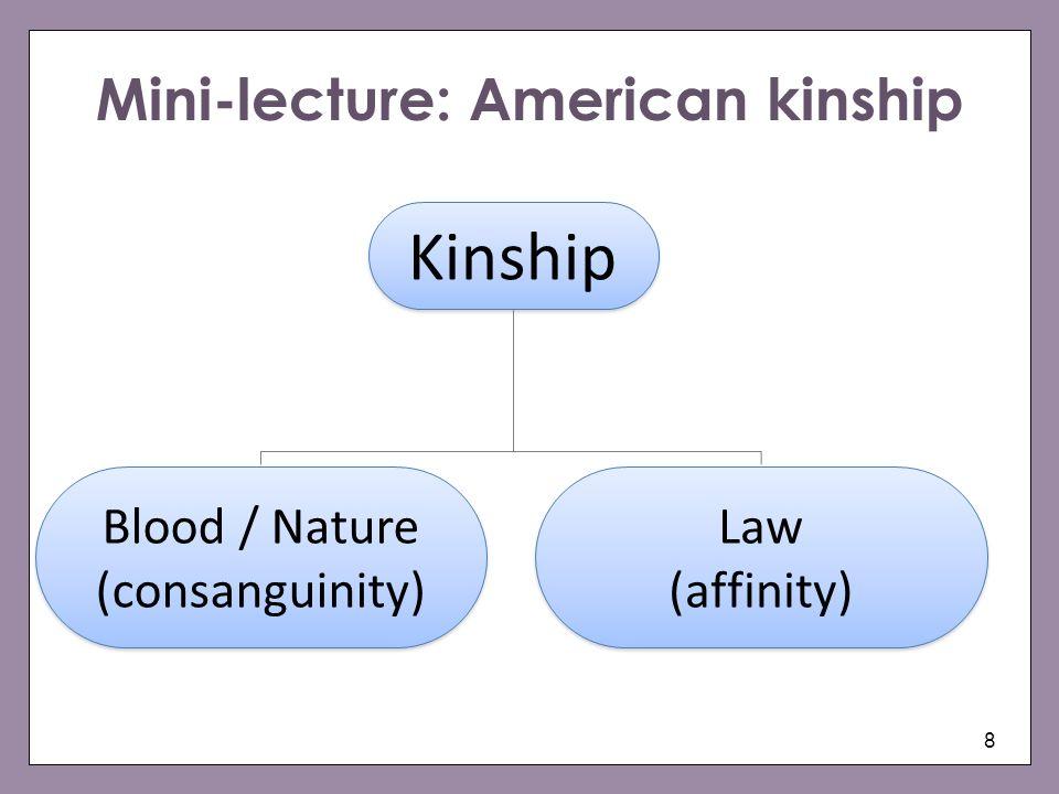 Mini-lecture: American kinship