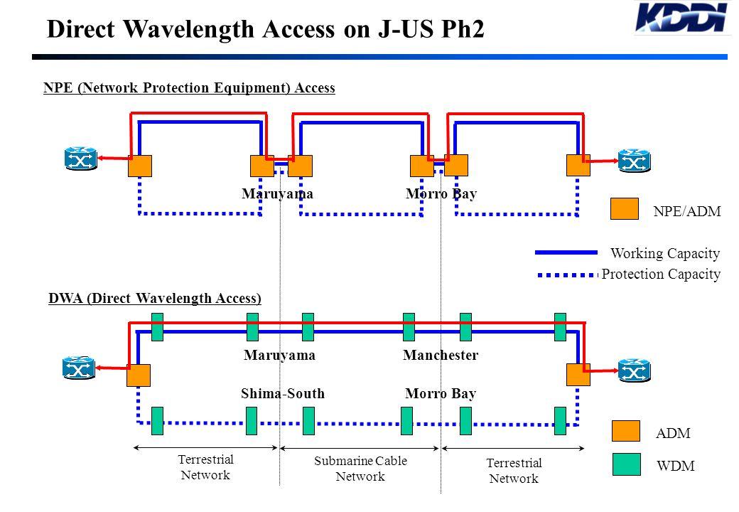 Direct Wavelength Access on J-US Ph2