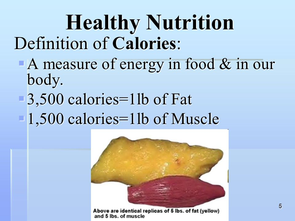 nutrition & your health - ppt video online download, Human Body