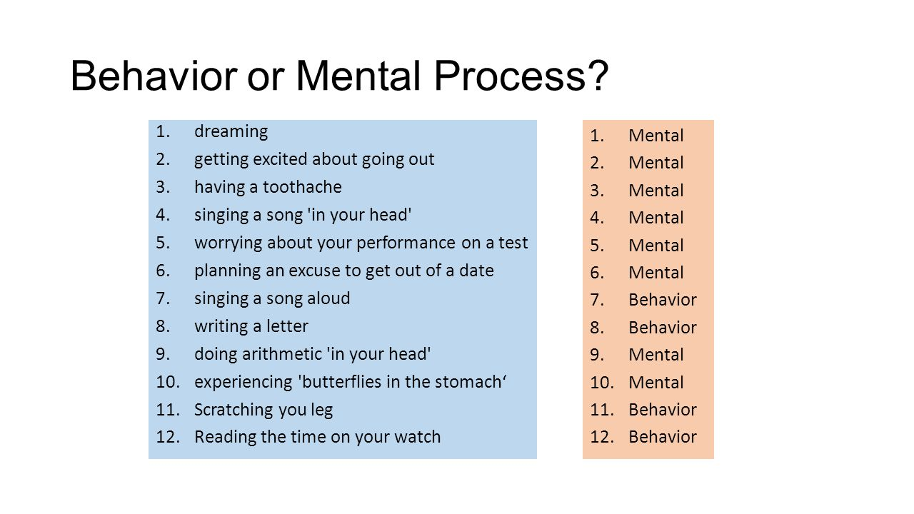mental process essay Some examples of mental processes, which are also known as cognitive processes and mental functions, include perception, creativity and volition the processes of the mind go beyond these.