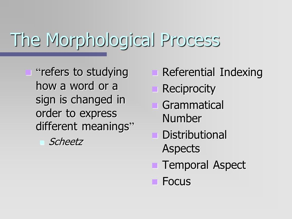 The Morphological Process