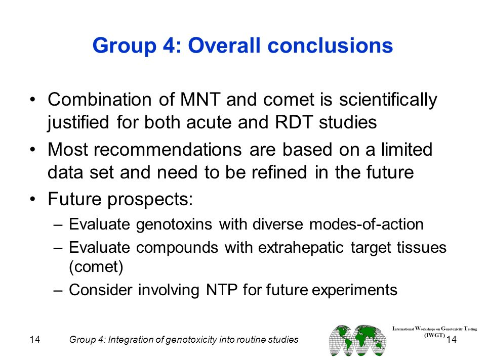 Group 4: Overall conclusions