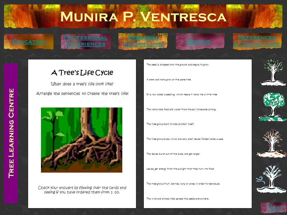 Munira P. Ventresca Tree Learning Centre Next A Tree's Life Cycle