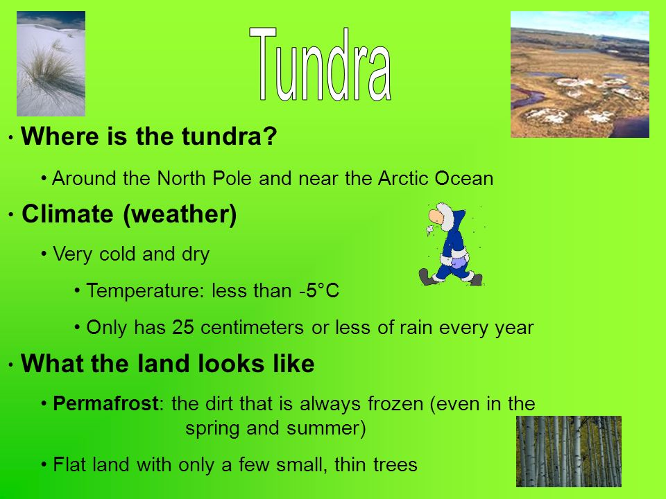 Tundra Climate (weather) Where is the tundra