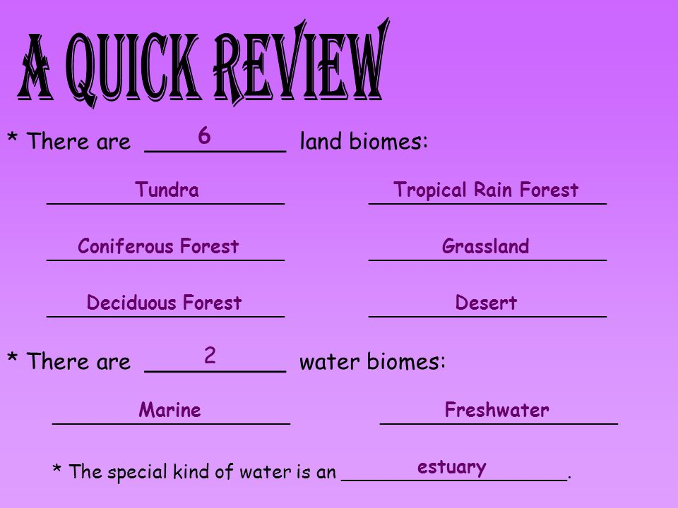 A Quick Review 6 * There are __________ land biomes: 2