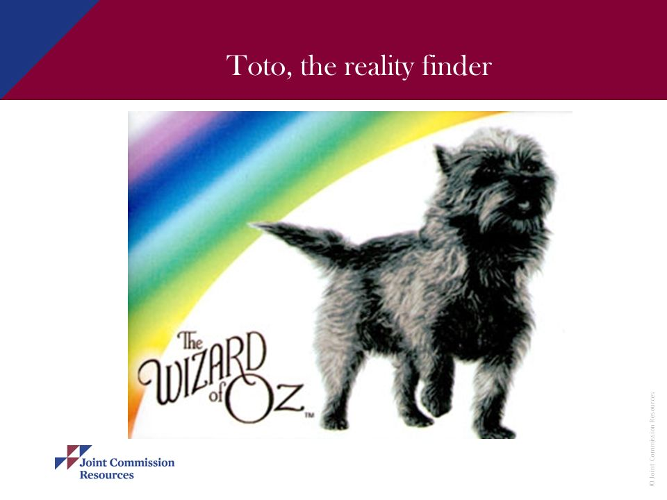 Toto, the reality finder