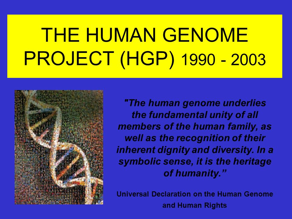 The human genome project ppt download.