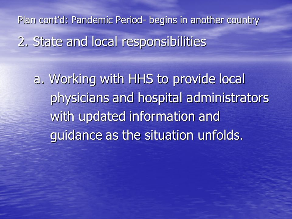 Plan cont'd: Pandemic Period- begins in another country