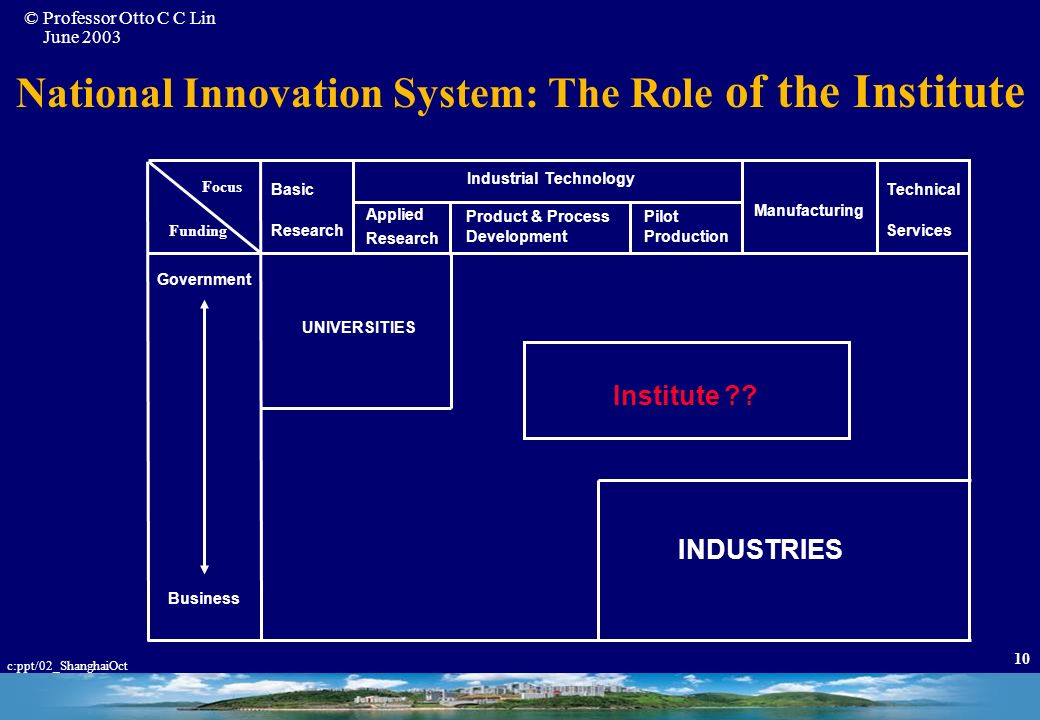 National Innovation System: The Role of the Institute