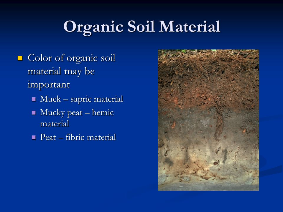 Top 28 peat color definition coal anthracite for Organic soil definition