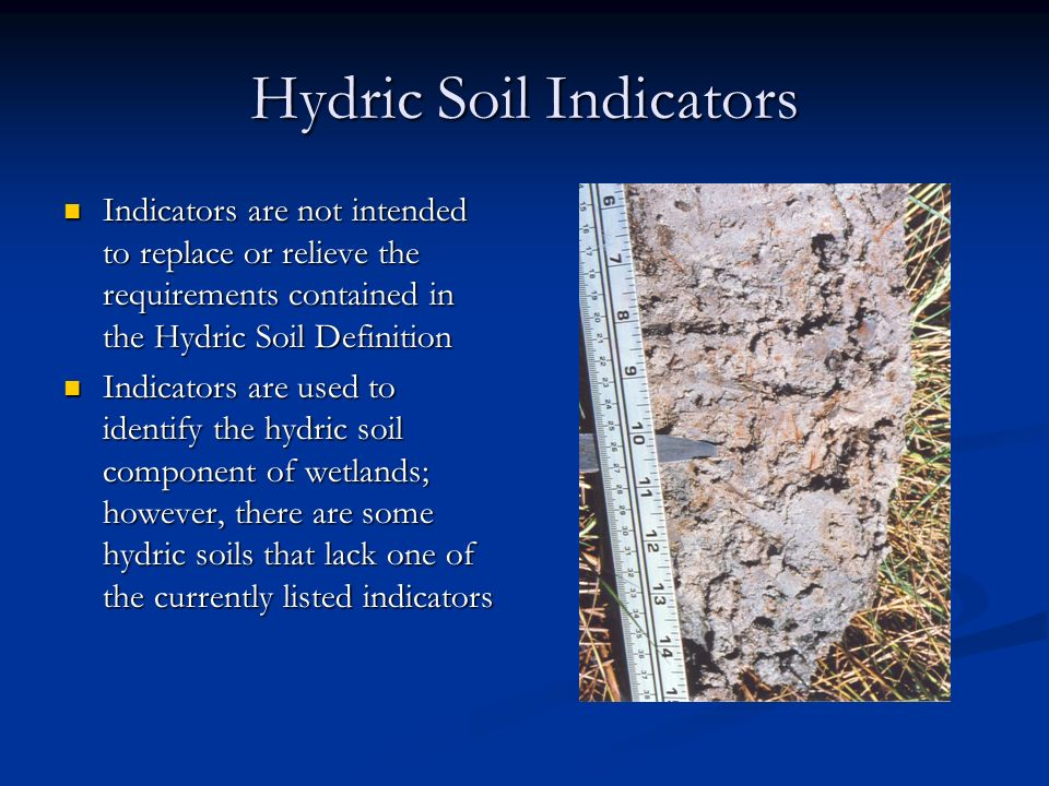 Field indicators of hydric soils in the united states for Soil definition