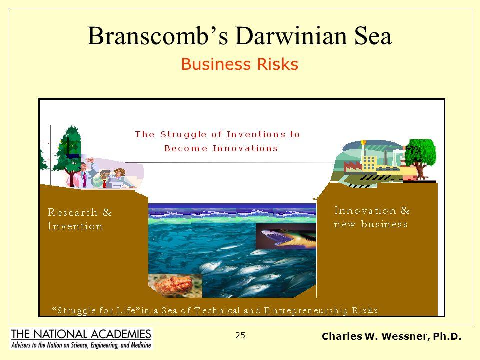 Branscomb's Darwinian Sea