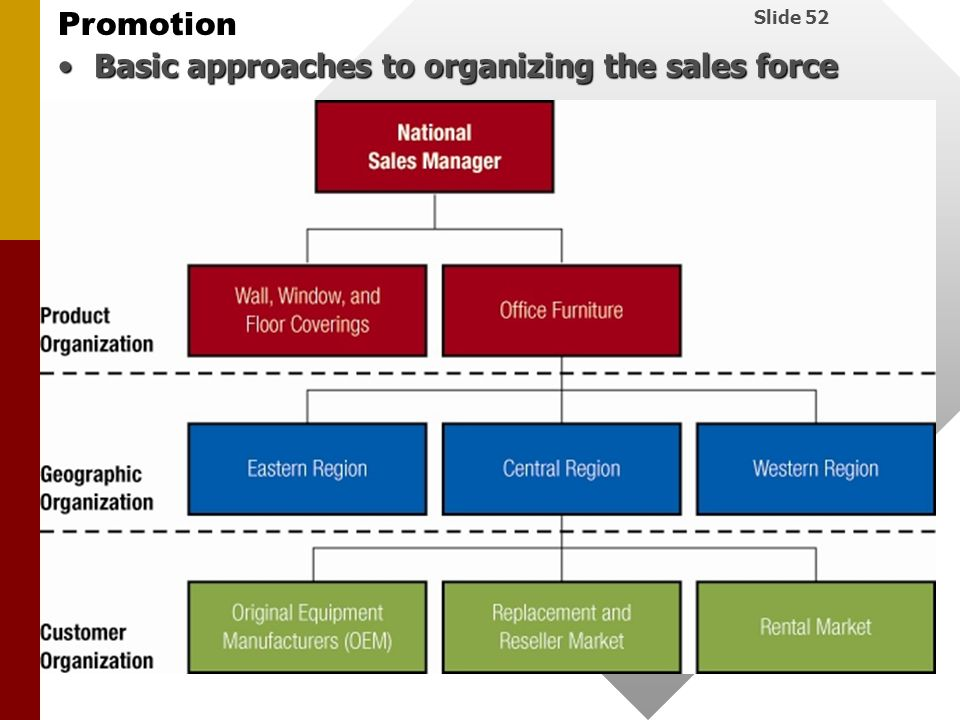 Basic approaches to organizing the sales force