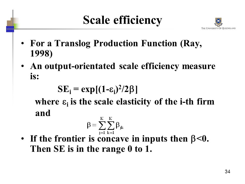 Scale efficiency For a Translog Production Function (Ray, 1998)