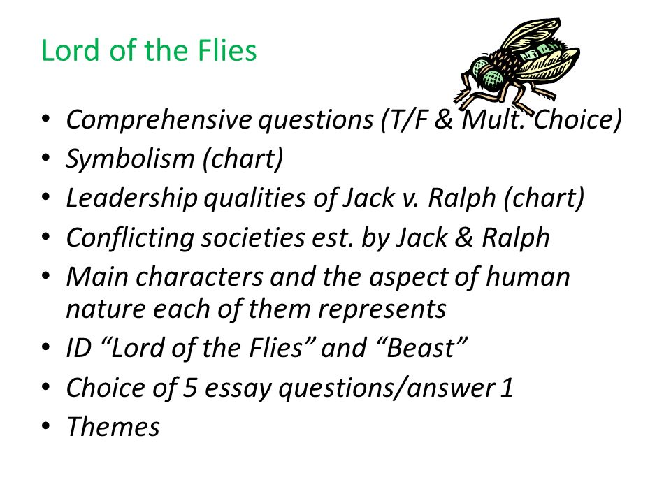 Lord of the Flies Comprehensive questions (T/F & Mult. Choice)