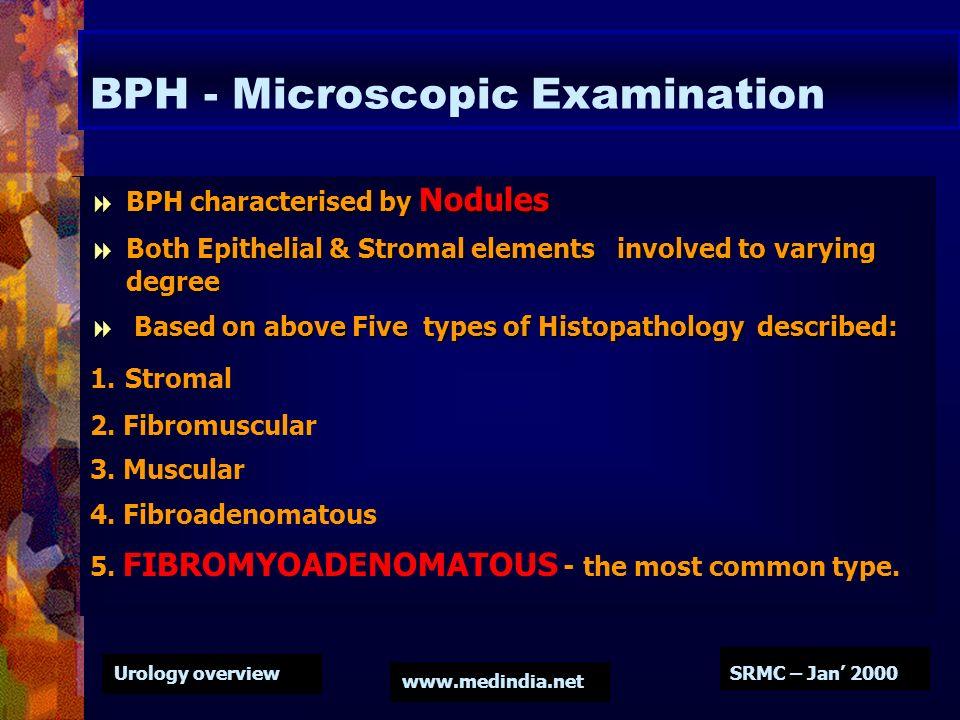BPH - Microscopic Examination