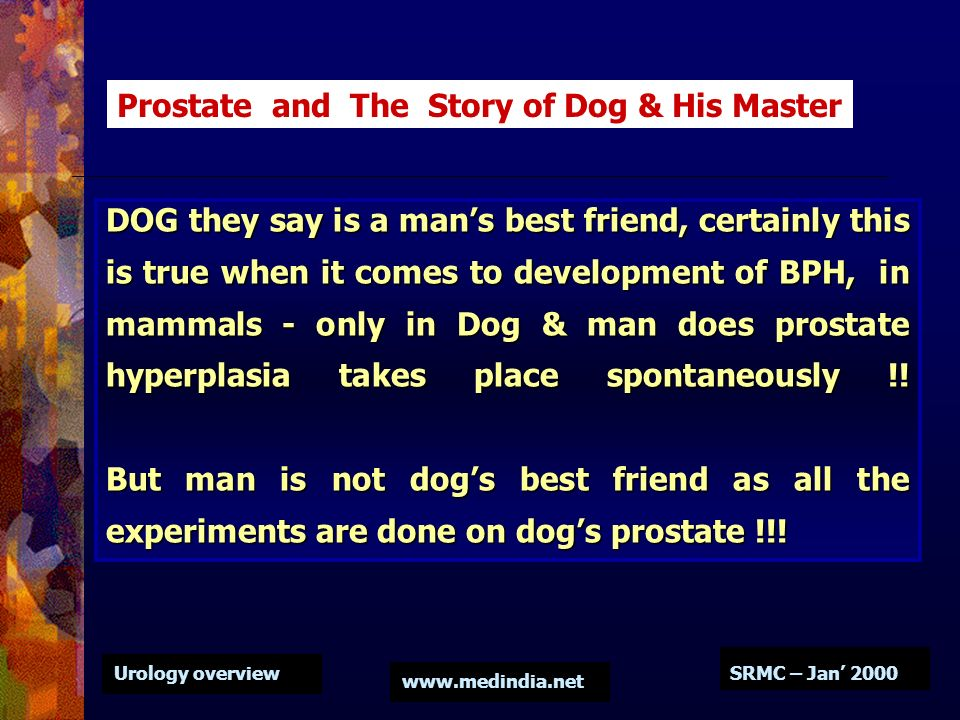 Prostate and The Story of Dog & His Master
