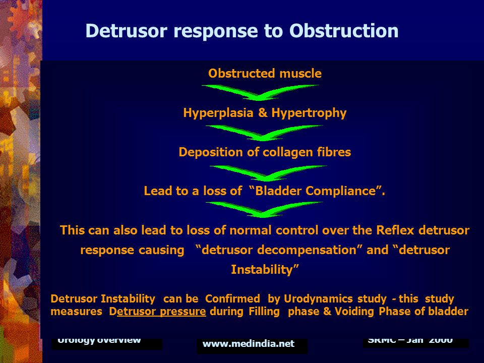 Detrusor response to Obstruction