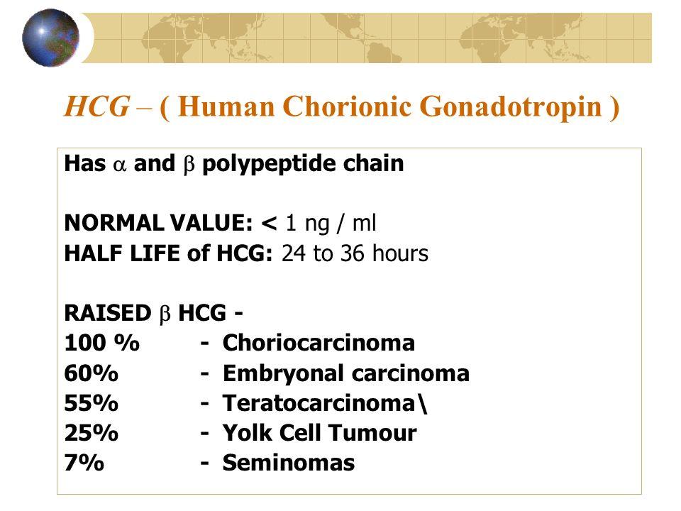 HCG – ( Human Chorionic Gonadotropin )