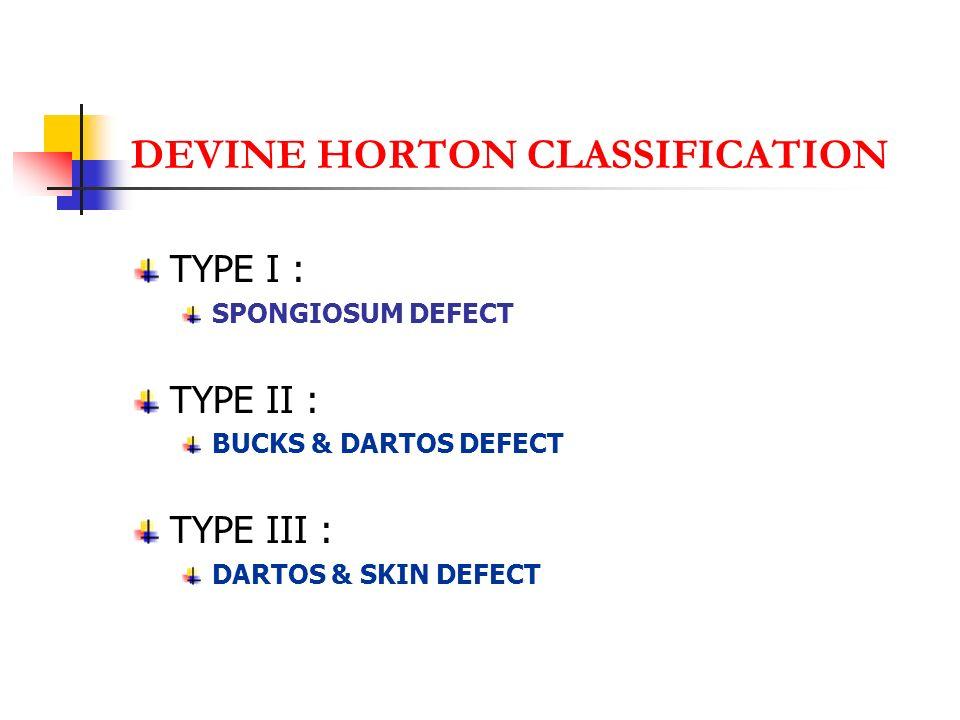 DEVINE HORTON CLASSIFICATION