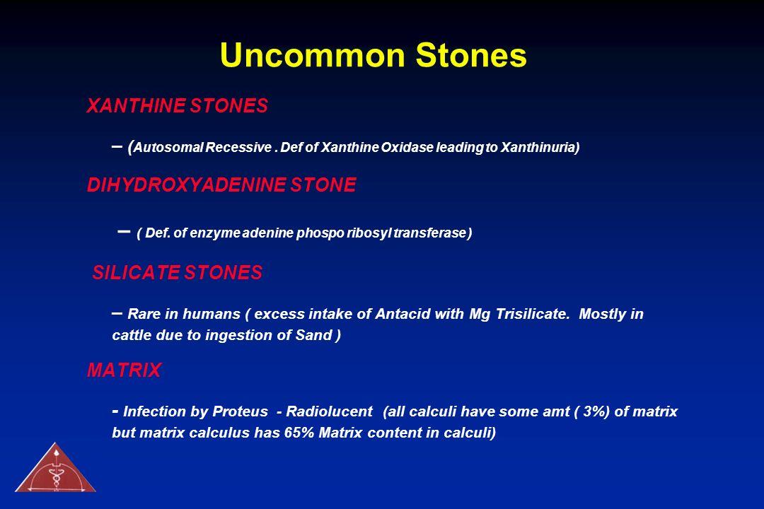 Uncommon Stones XANTHINE STONES. – (Autosomal Recessive . Def of Xanthine Oxidase leading to Xanthinuria)