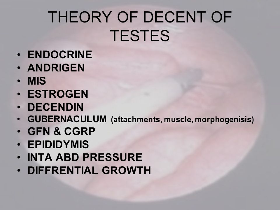 THEORY OF DECENT OF TESTES