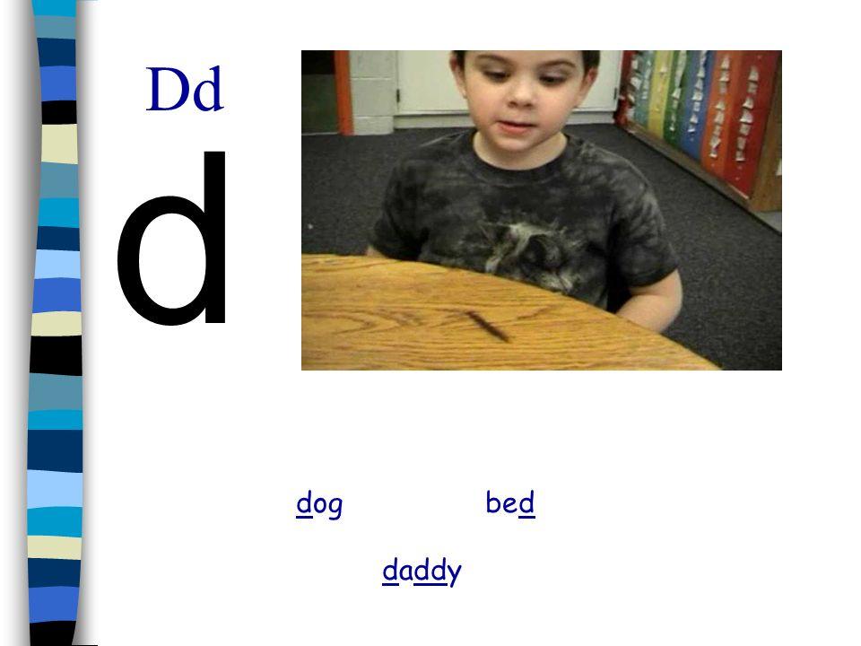 Dd d dog bed daddy