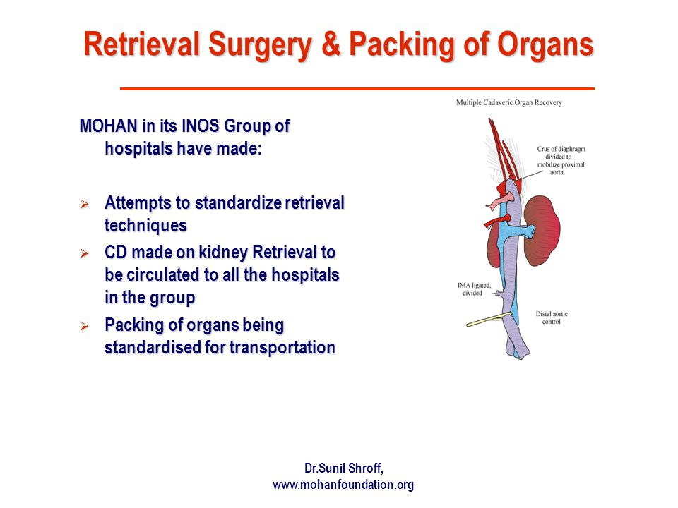 Retrieval Surgery & Packing of Organs