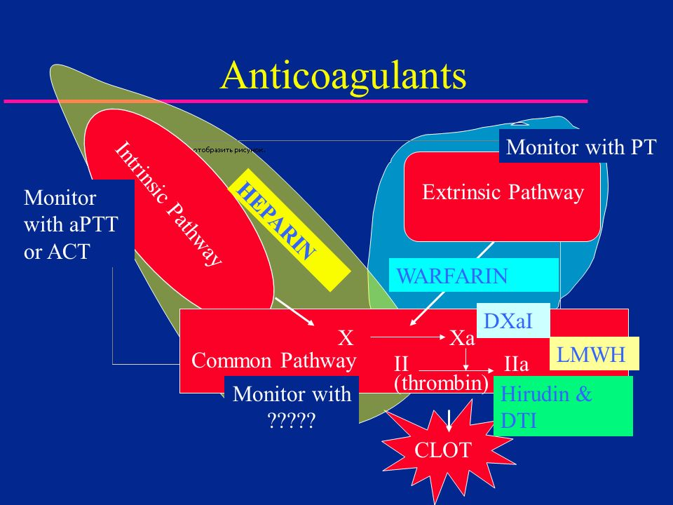 Anticoagulants Monitor with PT Extrinsic Pathway