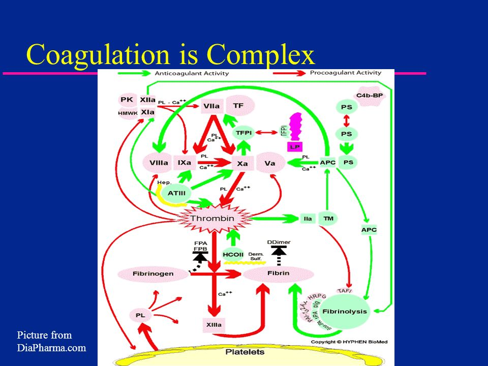 Coagulation is Complex