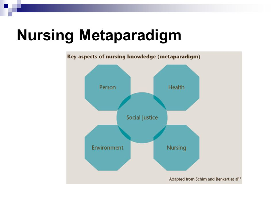 Four Basic Metaparadigm Concepts in Nursing