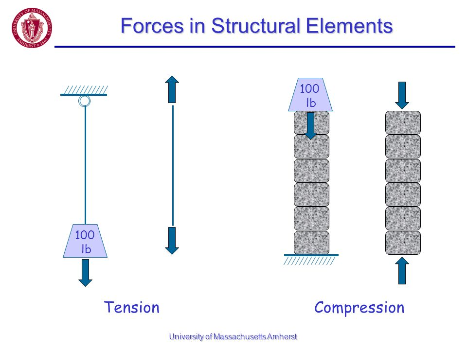 Forces in Structural Elements