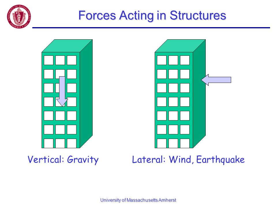 Forces Acting in Structures