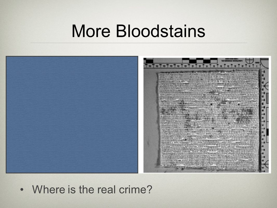 More Bloodstains Where is the real crime