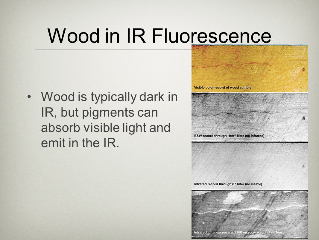 Wood in IR Fluorescence